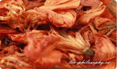 Покупайте лилию в интернет магазине Чайная Философия по выгодной цене!