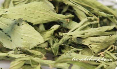 Покупайте стевию в интернет магазине Чайная Философия по выгодной цене!