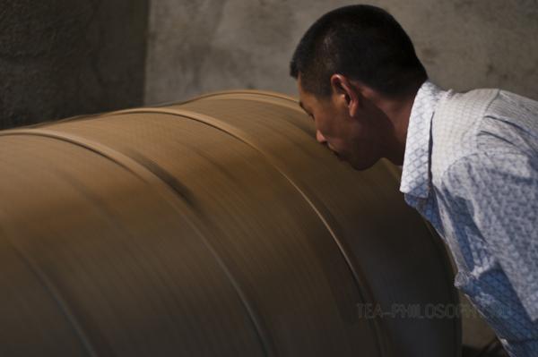 Ферментация чайных листьев Теганинь (Те Гуань Инь)
